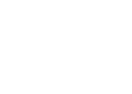 Calzaturificio Ras